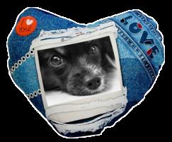 FotoPolštář srdce modrý s vlastní fotografií
