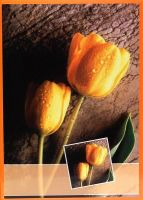 Fotoalbum B-35200S Flower 1